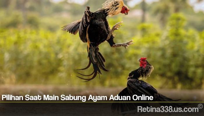 Pilihan Saat Main Sabung Ayam Aduan Online